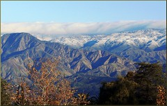 Rim of the Worrld from Caroline Pk, Redlands, CA 12-30-12a