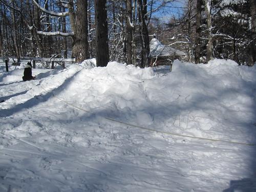 夫が雪かきをしてくれました by Poran111