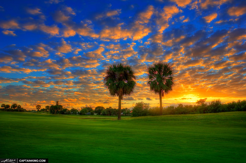 Golf-Course-Sunset-at-North-Palm-Beach-Over-Palm-Tree