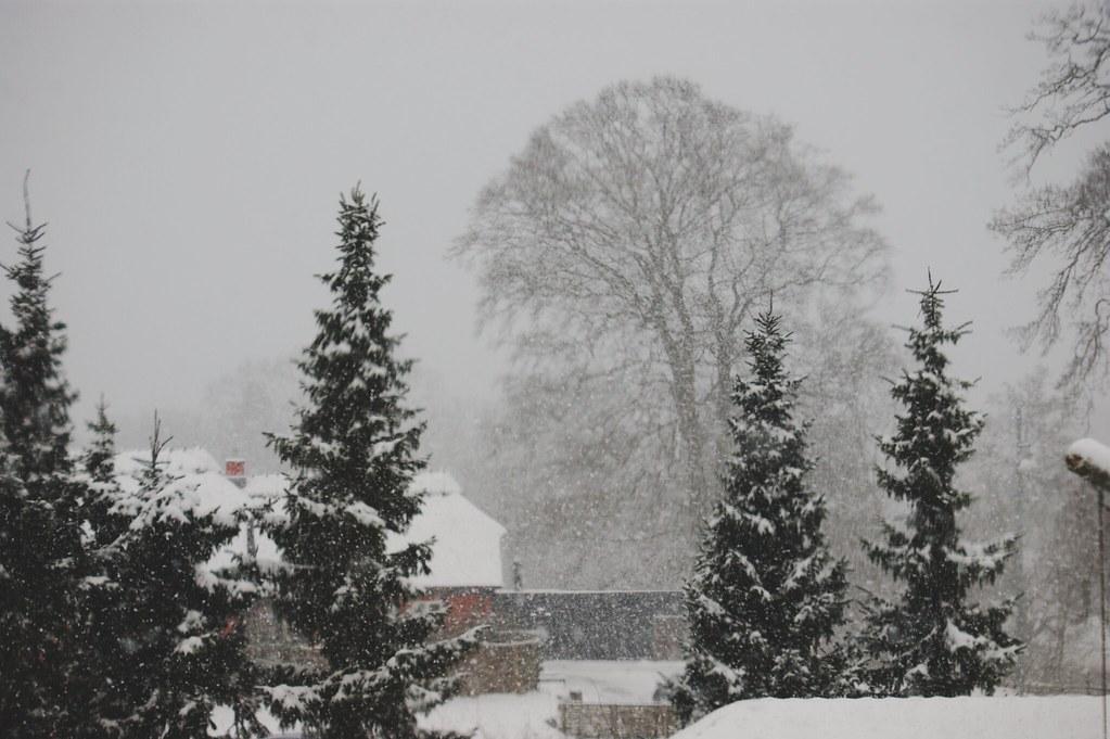 snow_3_emmaemilie