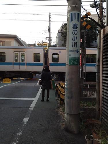 代々木八幡駅横の踏切 by haruhiko_iyota