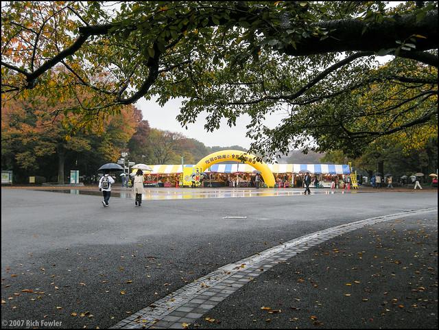 Ueno Park--Flea Market