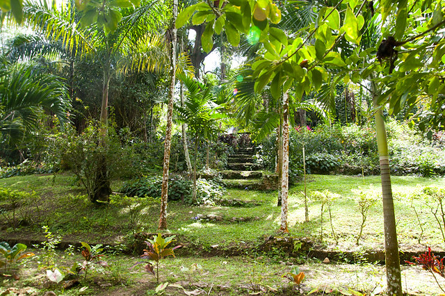 BotanicalGarden-21