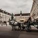 Vienna-20120914_2163