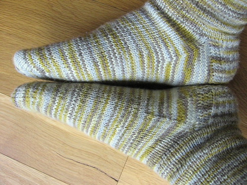 stacatto socks 2