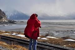 @Turnagain Arm, Alaska