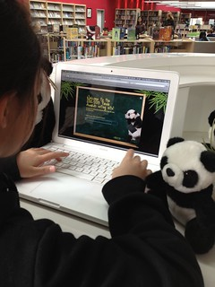 Voting for Panda 2013