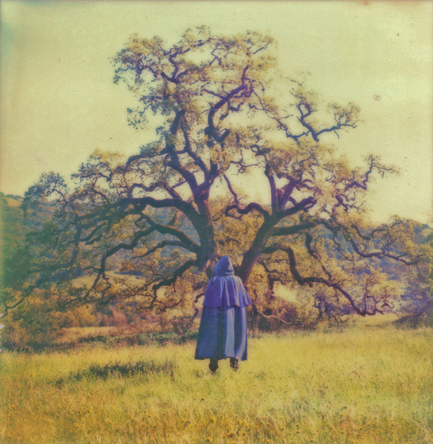 Amazing Polaroid photography by Brandon Long | The D-Photo