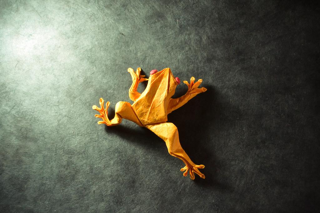Origami Tree Frog - Satoshi