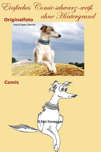 einfaches-Comic-sw-ohne-Hintergrund