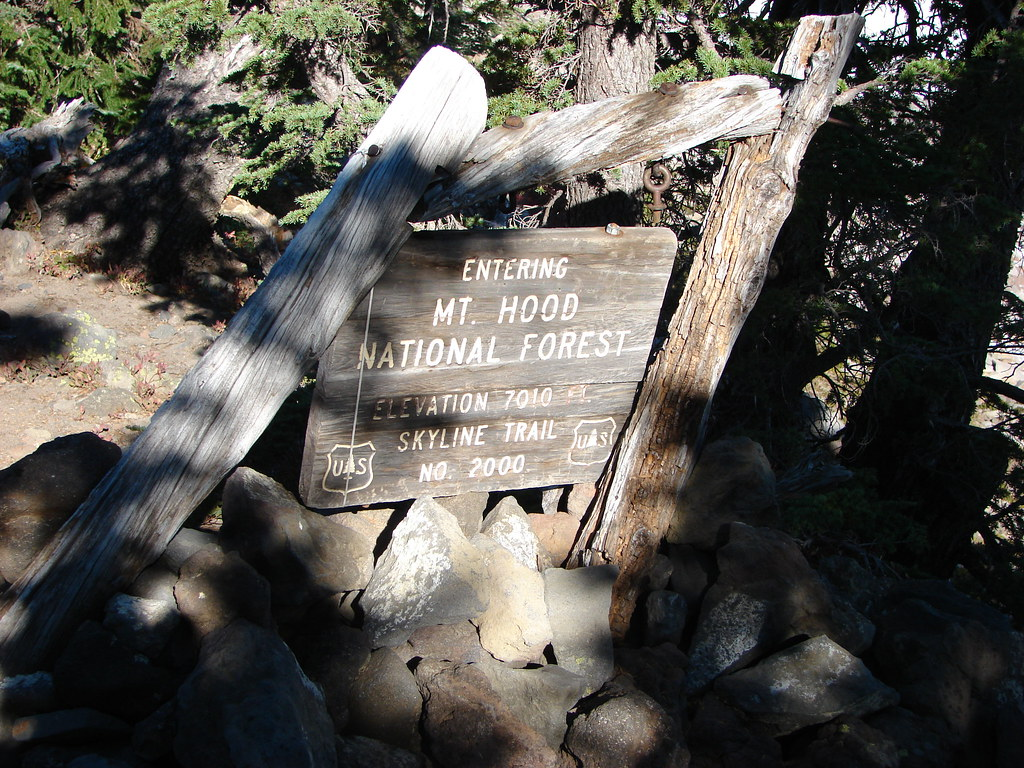 Sign marking the border between the Willamtte and Mt. Hood National Forests