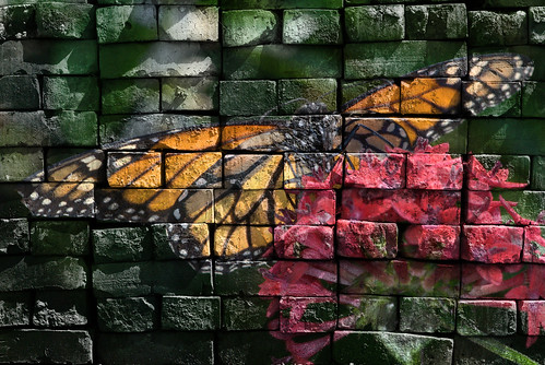 Monarch Butterfly with heavy brick wall texture