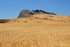 Kreta 2010 096
