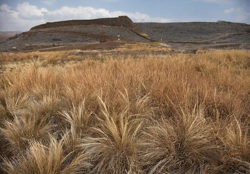 hawaii places bigisland puukoholaheiau nationalhstoricpark 201301240008