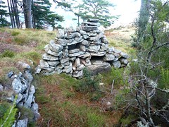 Boucle de la bergerie de Biancarellu : l'autre bergerie