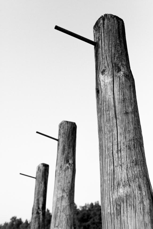 Sachsenhausen executions
