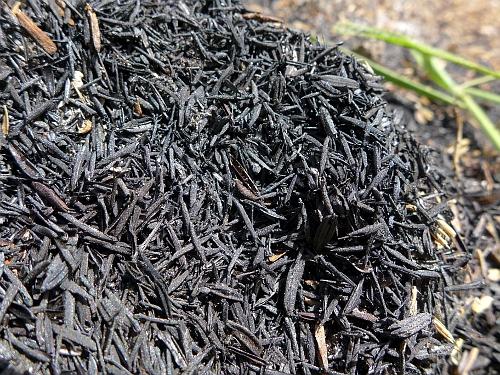 Carbonized Rice Hull (CRH)