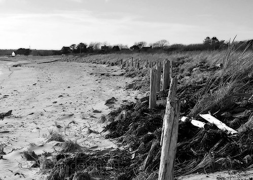 Beach in Winter BW 156/365