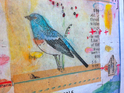 etsy.birdblue1