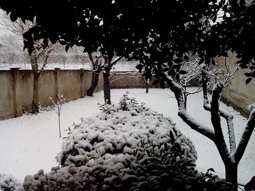 La prima vera neve del 2013 a Milano by Ylbert Durishti