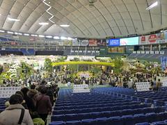 Tokyo Orchid Fair