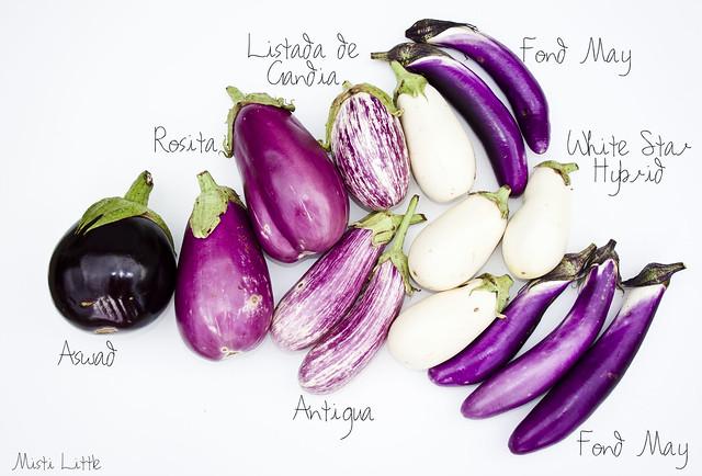 eggplants_map