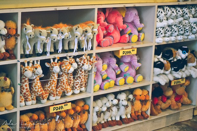 Souvenir shop Zoobic Safari