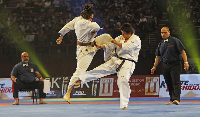 Antonio tusseau a bercy karate bushido for Porte z bercy