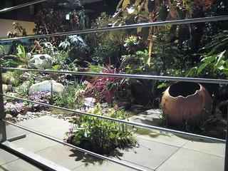 NWFGS 2013 View from cage