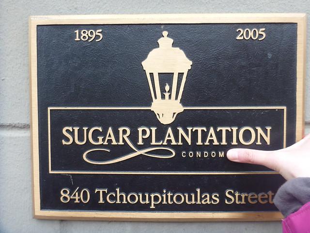 Sugar Plantation Condom