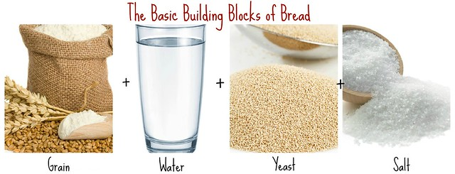 The Basic Building Blocks of Bread