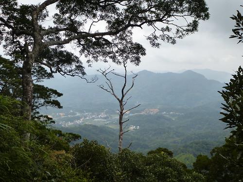 Hainan13-Wuzhishan-Montagne (71)