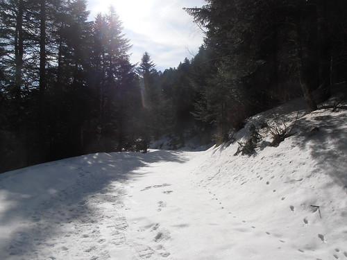 Col de Marie Blanque 136