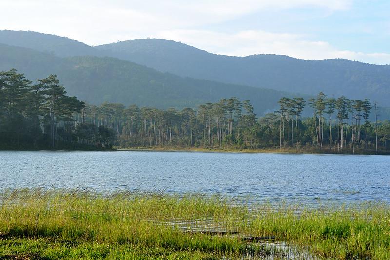 8550461189 519ca04468 c Khám phá hồ Tuyền Lâm thơ mộng   trữ tình