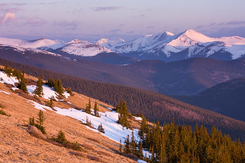 morning pink favorite snow mountains forest sunrise spring colorado purple unitedstates evergreen rockymountains continentaldivide mountevanswilderness