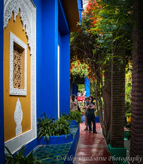 Tourists in the Majorelle garden !