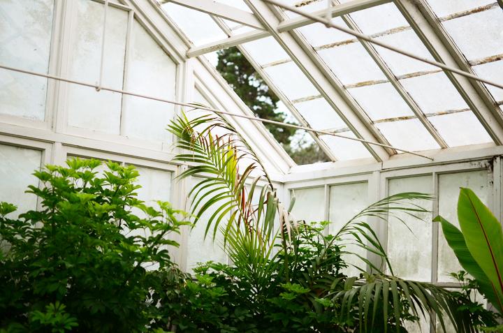 greenhouse a