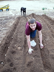 sowing, soil, sand,