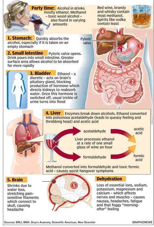 anatomy_of_hangover