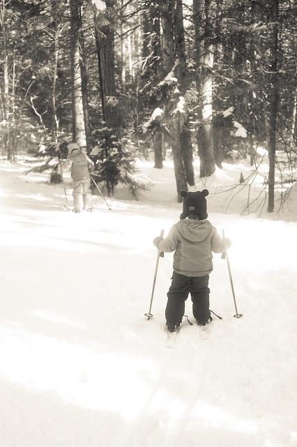 Ski (1 of 1)