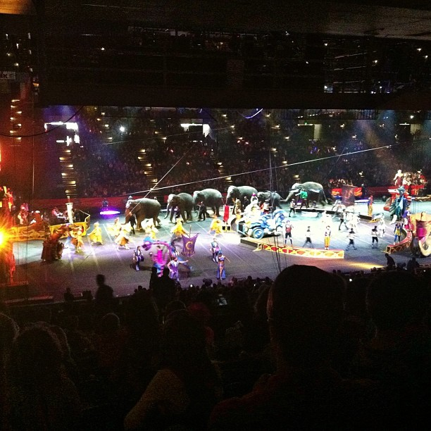 Circus with the boys... #ringlingbroscircus,
