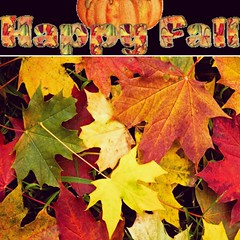 Fall is my favorite season. Nature's colors fall from the trees :maple_leaf: with the gentle winds of the season change. The late blooms :sunflower: make their mark before winter sweeps them away. Beauty is adorned with shades of olives, yellows, rich bro