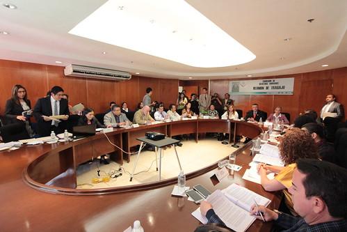 El día 21 de septiembre del 2016 se llevó a cabo en la H. Cámara de Diputados la reunión de trabajo de la Comisión de Derechos Humanos.