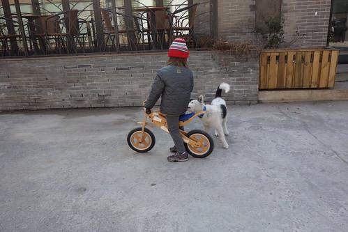 Jan2013 Shanghai