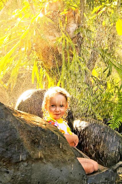 Sunshower  Flickr  Photo Sharing! # Sunshower Goes_064641