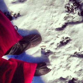 Snowy errands