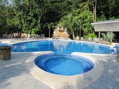 Turtle shaped swimming pool