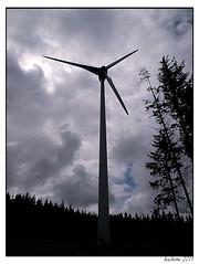 2011-06-11_Eolienne en Forêt des Barthes