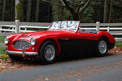 aston martin db2(0.0), ac ace(0.0), supercar(0.0), race car(1.0), automobile(1.0), vehicle(1.0), automotive design(1.0), austin-healey 100(1.0), austin-healey 3000(1.0), antique car(1.0), classic car(1.0), vintage car(1.0), land vehicle(1.0), sports car(1.0),