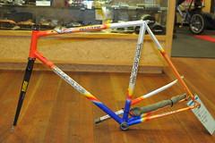 55cm Duarte $500